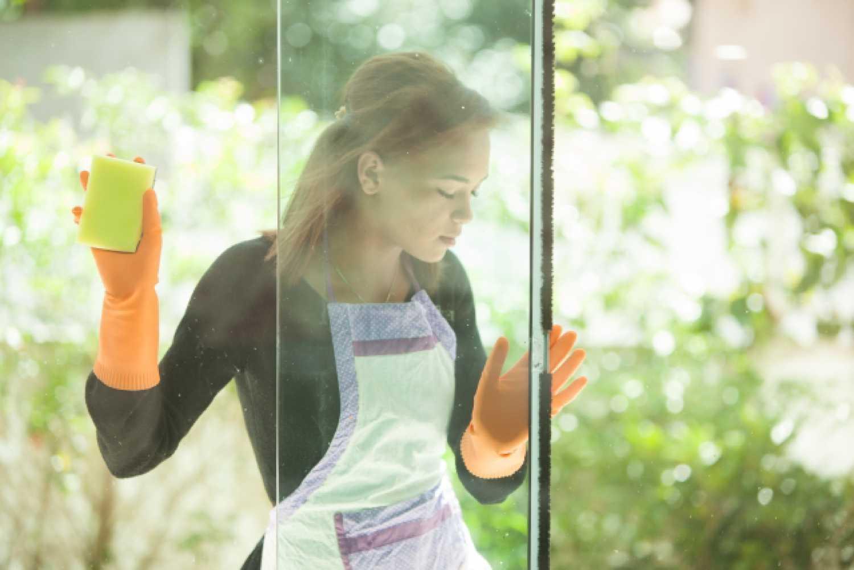 女性 外国人 窓 ガラス 掃除