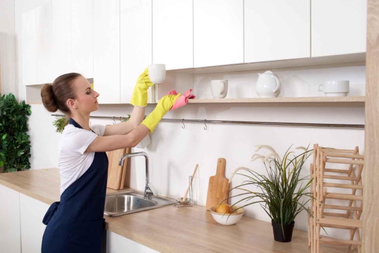 掃除 女性 外国人