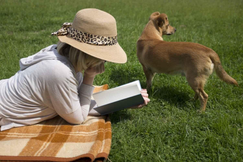 女性 犬 本 読書
