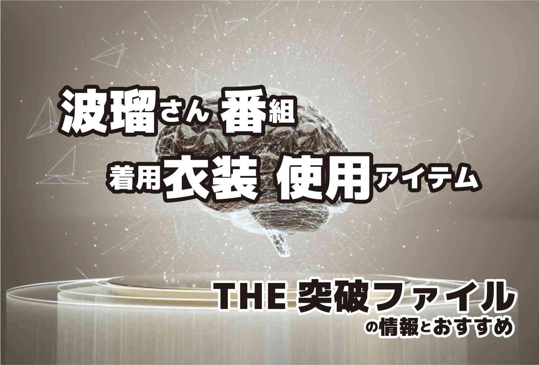 THE突破ファイル 波瑠さん 着用 衣装