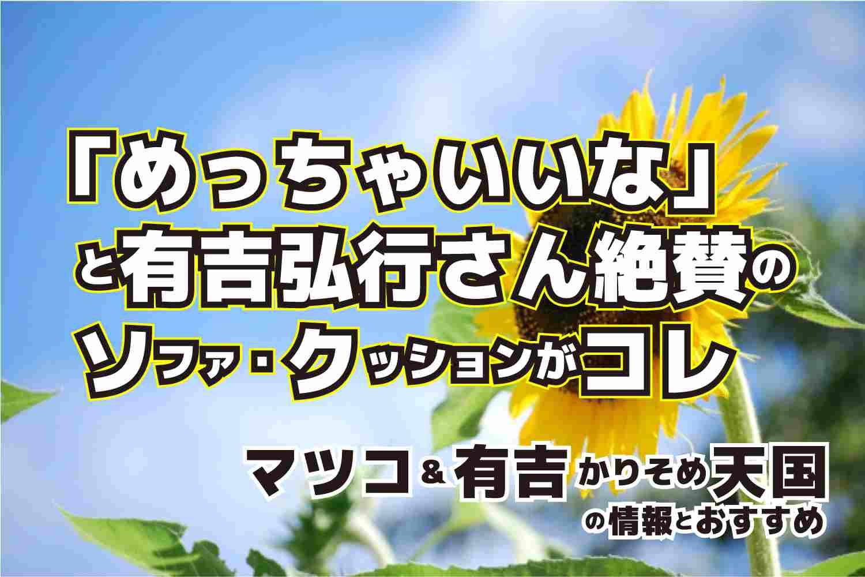 マツコ&有吉のかりそめ天国 有吉弘行さん おすすめ ソファ・クッション