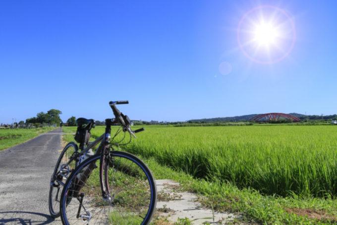 自然 サイクリング