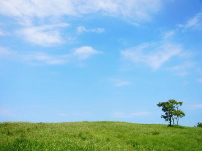 自然 空 雲