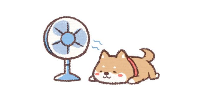 扇風機 わんちゃん 犬