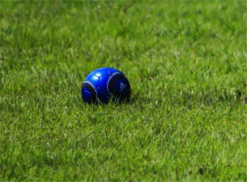 サッカーボール グラウンド 芝