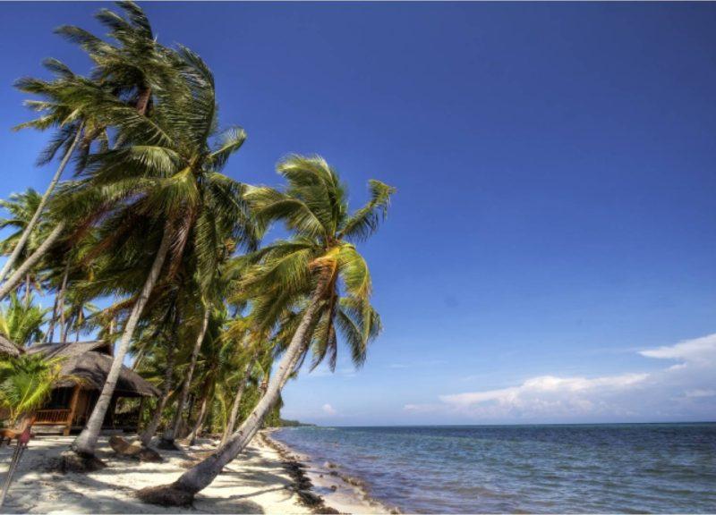 海 海岸 砂浜