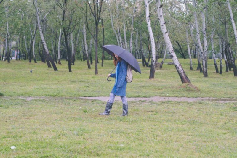 傘 雨 女性 外国人