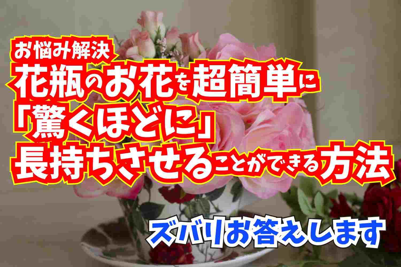 ズバリお答えします お悩み解決 お花を長持ちさせる方法 おすすめの本